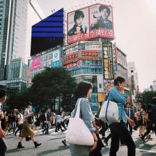 Tokio, co zwiedzać? Shibuya